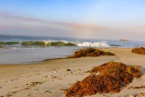 Sun, sand and surf on the California coast.